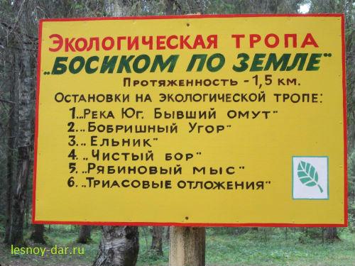 Начало экологической тропы