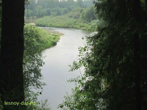 Вид на долину реки Юг с Бобришного Угора