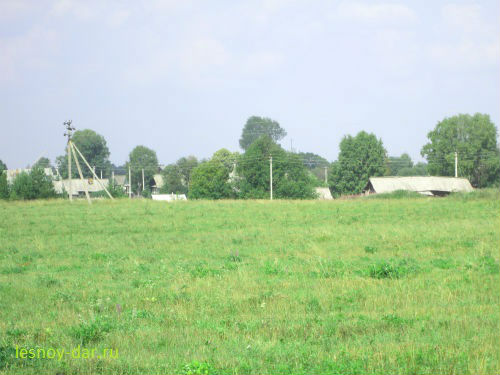 Деревня Блудново