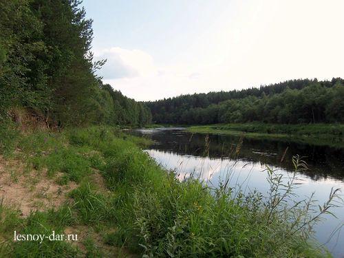 Кулой - рыбная река