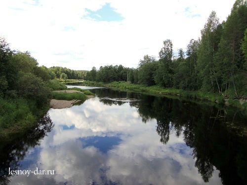 Река Кулой