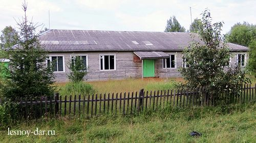 Сибирская школа - сад