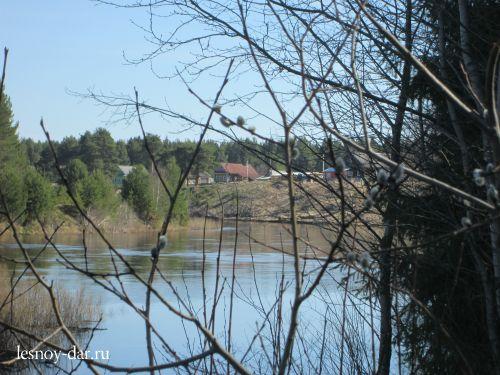 Вид на Юг и поселок (май)