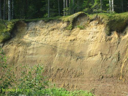 Триасовые отложения на берегу Юга