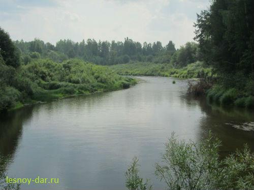 """Река под Бобришным. """"Бывший омут"""""""