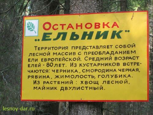 """Остановка """"Ельник"""""""