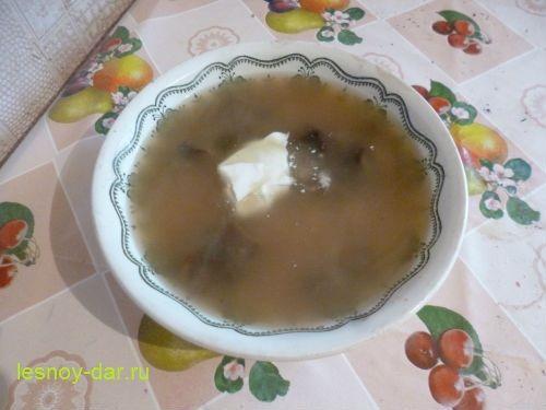 zhelchnyj_grib-sup